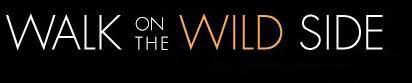 wildeleven1