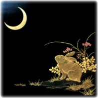rabbit and moon