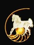 schelp11horse