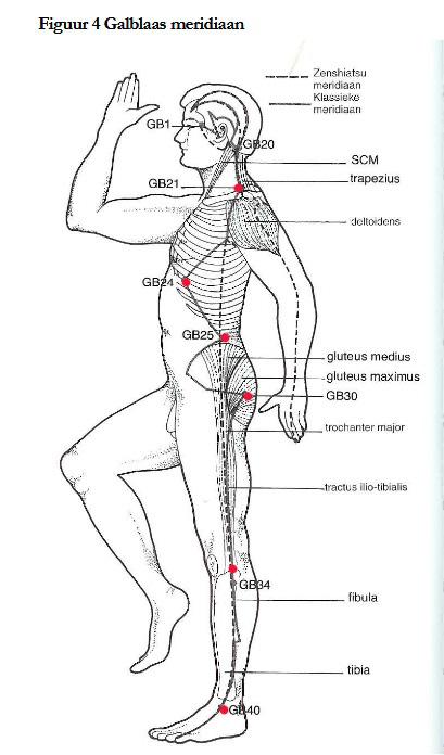 operation gall bladder